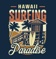 vintage hawaii surfing colorful concept vector image vector image