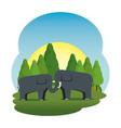 cute elephants couple in the field scene vector image