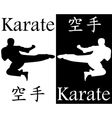 karate kick in the jump vector image vector image
