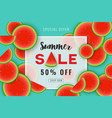 summer sale promotion banner background design vector image vector image