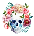 Watercolor skull vector image