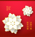 2019 chinese new year greeting card vector image vector image