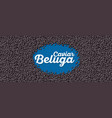 beluga caviar banner in cartoon style vector image vector image