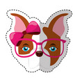 cute french bulldog female with hipster accessory vector image vector image