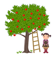 Girl picking apples vector image vector image