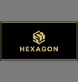 sk hexagon logo design inspiration vector image vector image