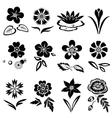Flower set Nasturtium primula lily viola vector image vector image
