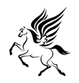 Pegasus horse with wings vector image vector image