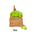 bag of pea culture wooden spoon agricultural vector image