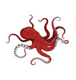 giant red octopus on a white background vector image vector image