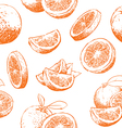 Orange fruit pattern including seamless on vector image vector image