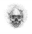 skull head particle vector image