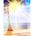 Summer hot holidays poster template vector image vector image