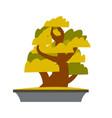 bonsai japanese cartoon tree growing in pot vector image vector image