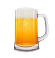 Excellent Isolated mug of beer vector image vector image