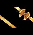 shiny golden satin ribbon gold bow for vector image