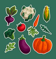 vegetable sticker set variety decorative vector image