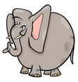 elephant cartoon wild animal character vector image vector image
