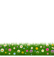 grass and flowers border vector image