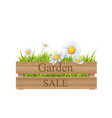 grass in wooden crate vector image vector image