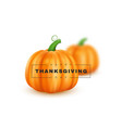 happy thanksgiving minimalistic holiday design vector image
