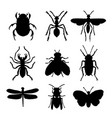 insect animal icon flat isolated bug ant vector image vector image