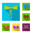 multicolored bows flat icons in set collection for vector image
