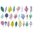 plants and leaves in bright colors collection vector image vector image