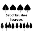 set of brushes leaves vector image