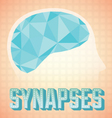 Abstract Human Brain Synapses vector image vector image