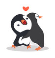 cute penguins couple hug vector image