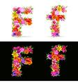 flower font vector image