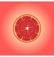 Grapefruit eps 10 vector image vector image