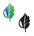 leaf and droplet icon concept vector image vector image