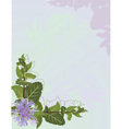 Mint background vector image vector image