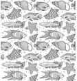 pattern with fishes and shells vector image