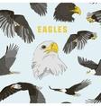 set eagles pattern vector image