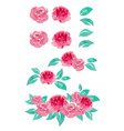 watercolor painting rose collection vector image