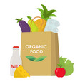 paper bag with food flat concept vector image