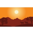 At sunset scenery with zebra silhouette vector image vector image