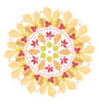 colorful mandala with autumn leaves on white vector image