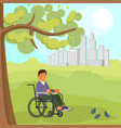 disabled man in wheelchair vector image