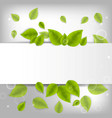 realistic leaves background with space vector image