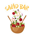 salad bar vector image vector image