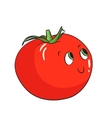 Vegetable tomato vector image vector image