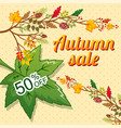 autumn sale concept background cartoon style vector image
