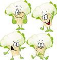 cauliflower - funny cartoon vector image vector image