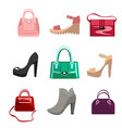 fashion women bags and shoes vector image vector image