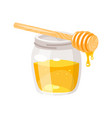 glass honey jar vector image vector image