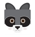 isolated raccoon face vector image vector image